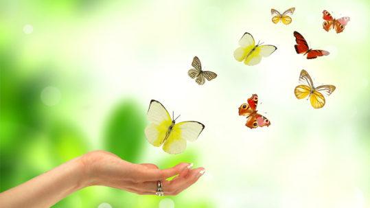 Emotional Healing from Trauma